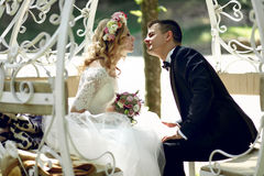 Handsome groom kissing blonde beautiful bride in magical fairy t Royalty Free Stock Photography