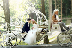 Handsome groom kissing blonde beautiful bride in magical fairy t Royalty Free Stock Photo