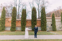 Handsome groom posing with his wife near cypress trees and fortified wall in romantic park Stock Photos