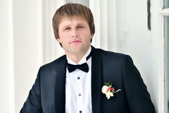 Handsome groom in suit in the nature Royalty Free Stock Images