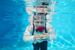 Handsome groom underwater diving giving a red rose flower Royalty Free Stock Photography