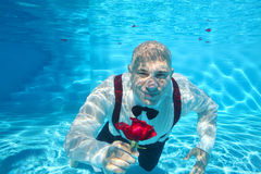 Handsome groom underwater diving giving a red rose flower Stock Photos