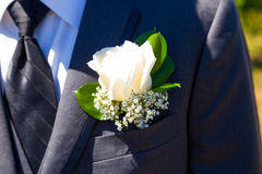 Handsome Groom Wedding Day Royalty Free Stock Images