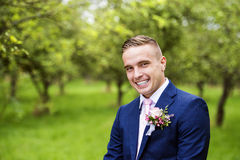 Handsome groom royalty free stock photography