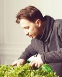 Handsome grower is watering potted plants indoor. Stock Image
