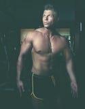 Handsome guy. Bodybuilder Stock Photography