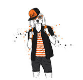 A handsome guy with a dog head dressed in a T-shirt, shirt and shorts. Summer clothes. Vector illustration. Hipster. Beagle. Royalty Free Stock Photos