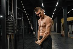 Handsome guy training triceps in gym pumping up body bodybuilding royalty free stock images