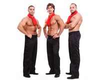 Handsome guys Royalty Free Stock Photos