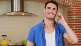 Handsome happy man having a phone call