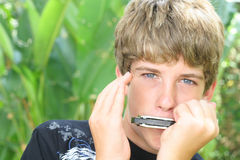 Handsome harmonica boy Royalty Free Stock Photography