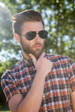 Handsome hipster wearing sunglasses Stock Image