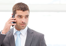 Handsome hispanic businessman on the phone Stock Photos
