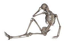 Handsome human skeleton - 3D render Royalty Free Stock Photo