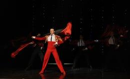Handsome Knight-Spanish flamenco-the Austria's world Dance Stock Images