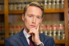 Handsome lawyer in the law library Royalty Free Stock Photos