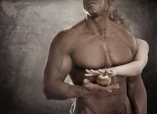 Handsome male body. Couple holding apple in hands. Concept Adam Stock Photography