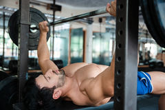 Handsome male bodybuilder doing bench press royalty free stock photo