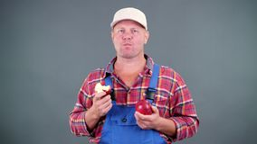 Handsome male farmer in plaid shirt and blue jumpsuit, holding in hands two large ripe red apples, eats, bites them on stock footage