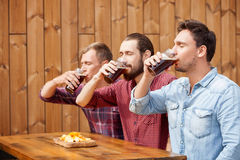 Handsome male friends are swigging lager in bar Royalty Free Stock Photos