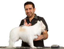 Handsome Male Groomer Working Stock Photography