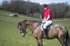 Handsome Male Horse Rider on horseback with white breeches, black boots and red polo shirt in green field with horses in distance Stock Photo