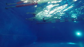 A handsome male swimmer swims a breaststroke, then turns around and swims to the other side. Side view. stock footage