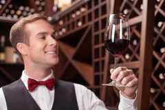 Handsome male waiter is working with beverage Stock Image