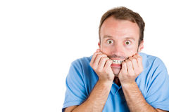 Handsome man afraid and scared looking at you Royalty Free Stock Image
