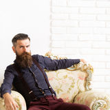 Handsome man in armchair Stock Photo