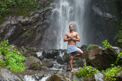 Free Handsome Man At Waterfall Royalty Free Stock Photos - 29880138