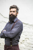 Handsome man with beard Royalty Free Stock Photos