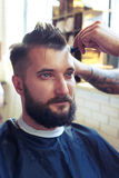 Handsome man with beard Royalty Free Stock Image