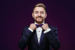 Handsome man with beard in tuxedo and bow tie looking at camera. Stock Image