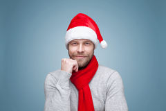 Handsome man with beard wearing a Christmas hat. Portrait of a handsome man with beard wearing a Christmas hat Stock Photos