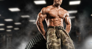 Handsome man with big muscles, posing at the camera in the gym royalty free stock photos