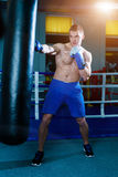 Handsome man in blue boxing gloves training on a punching bag in the gym. Male boxer doing workout. Royalty Free Stock Photography