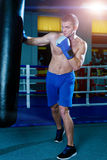 Handsome man in blue boxing gloves training on a punching bag in the gym. Male boxer doing workout. Royalty Free Stock Images