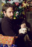 Handsome man caressing little dog christmas night next to tree at home. Happy man at christmas night Stock Images