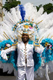 Handsome man carnaval. Handsome man in a summer carnaval street parade (Rotterdam, Netherlands, 2008 stock photo