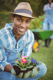 Handsome man crouching in the garden Royalty Free Stock Images