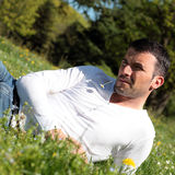 Handsome man with daisy Stock Photography