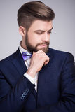 Handsome man in dark blue suit and white shirt. With bow tie Stock Photos