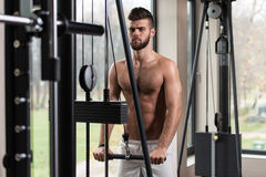 Handsome Man Doing Triceps Exercises In The Gym Royalty Free Stock Photos