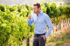 Handsome man drinking wine Stock Photography