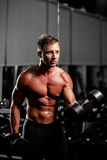 Handsome man with dumbbells workout in gym Stock Image