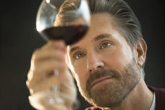 Handsome Man Examining Red Wine Stock Photography