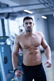 Handsome man exercising at the gym Royalty Free Stock Images