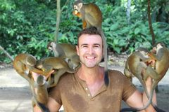 Handsome man feeding the monkeys.  royalty free stock photography