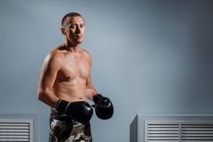 Handsome man or healthy boxer or Thai boxer with six pack wearing boxing gloves. Portrait of boxer in Boxing gloves on gray background Stock Images